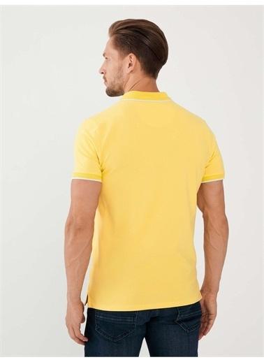 MCL MCL Polo Yaka Pamuklu Slim Fit Büyük Beden Tişört Sarı